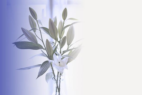 1792_white.jpg